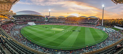 Sunset at Adelaide Oval (Anthony's Olympus Adventures) Tags: cricket testcricket sport sports team adelaide adelaidecbd adelaideoval stadium ground arena pitch sunset southafrica australia sa southaustralia panorama landscape stunning wow beautiful amazing photo photogenic grandstand seat view panoramic event colourful sundown night nightime afterdark dark cricketing olympusem10 olympus olympusomd