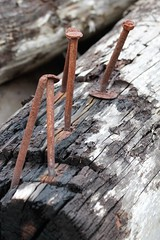 Nailed it (CobbydaleInCanada) Tags: rust nails log