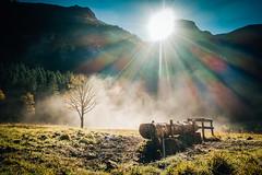 Herbsttage (KPictures Fotografie) Tags: herbst autumn outdoor landscape nature sonyrx100m3 sterreich austria ahornboden fog nebel sun europe travel