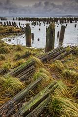 Lowered Eyes (Wayne Stadler Photography) Tags: photomatix
