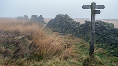 Decaying wall (neil.bulman) Tags: stonewall countryside crurbargap longshawestate grouseinn signpost peakdistrict nature nationalpark derbyshire longshaw fog wall moors moorland nationaltrust calver england unitedkingdom gb