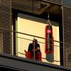 Boxeur - Boxer, Paris (blafond) Tags: architecture paris france iledefrance punchingball boxeur boxer