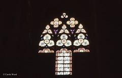 Carcassonne - La Cit - Eglise Saint-Nazaire (Fontaines de Rome) Tags: carcassonne cit eglise saintnazaire saint nazaire vitrail