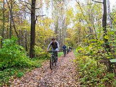 (Бесплатный фотобанк) Tags: осень парк велосипед велосипеды велосипедисты велосипедист россия москва