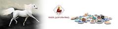 Social-Media (رابطة ملاك الخيل بالباحة) Tags: اللجنة التنظيمية والاعلامية للرابطة ملاك الخيل بالباحة رابطة فرسان الباحة العقيق زهران بلجرشي فارس خيول خيل خيالة حصان فرس فروسية