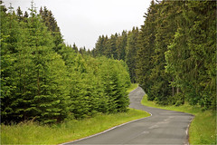 Forest road in the Harz (Foto Martien) Tags: harznationalpark nationalparkharz nationaalparkharz harzmountainrange harzgebergte harzmittelgebirge forestroad woodlandpath bosweg naturallandscape natuurgebied forest wood bos woud park forestlandscape woodedlandscape boslandschap path road way roadway pad brocken lowersaxony saxonyanhalt germay duitsland deutschland geotaggedwithgps geotagging geotag a77 sonyalpha77 sonyslta77v sonyalphadslr carlzeisssony1680 martienuiterweerd fotomartien