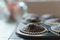 Baked Chocolate Cupcakes (Ana Penelope) Tags: cupcake chocolate