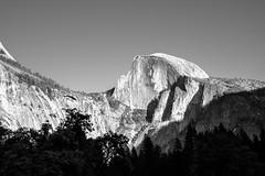 Half Dome, Yosemite (mashgau) Tags: halfdome usa landscape yosemite bw