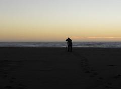 Catching the Waves (dcnelson1898) Tags: ptreyesnationalseashore ptreyes marincounty california coast northerncalifornia nationalpark nationalparkservice nps federal pierceranch dairy farming sunset pacificocean longexposure beach ocean sea water outdoors