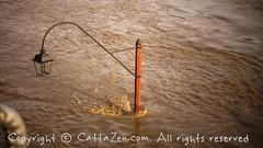 Torino (9) (cattazen.com) Tags: alluvione torino po esondazione parcodelvalentino murazzi pienadelpo cittàditorino turin piemonte