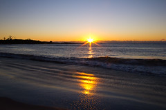 A New Beginning (johnshlau) Tags: anewbeginning 2016aneventfulyear will2017beabetteryear eventfulyear newyear 2017 sunrise sun sandy sand beach penguins sea waves dawn morning breezes smellofthesea bicheno tasmania australia nature landscape silhouette sunshine golden reflections sandybeach fairypenguins