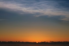 Nachtleuchtende Wolken und Sonnenaufgang ber dem Sdermoor; Bergenhusen, Stapelholm (Chironius) Tags: stapelholm bergenhusen schleswigholstein deutschland germany allemagne alemania germania  niemcy wolken clouds wolke nube nuvole sky nuage  himmel ciel cielo hemel  gkyz gegenlicht