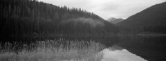 Cloud over Lightning lake (Orion Alexis) Tags: film 35mm tx1 fujifilm xpan panorama widescreen ilford delta 400 analog analogue cinematic blackandwhite black white monochromatic monochrome nature mountains forest wild british columbia canada bc lake reflection peaceful
