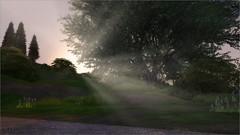 Sunset in Windenburg (mertiuza) Tags: ts4 ls4 sim sims los 4 sims4 sim4 ea eagames game games maxis lossims thesims lossims4 thesims4 luev tarih tarihsims tarihsim ts mertiuza windenburg sunset