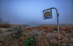 Partie de pche ... (Prx.01) Tags: dombes etang hiver brume brouillard landscape paysage waterscape