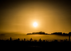 another day is waking up (bart.kwasnicki) Tags: sunrise australia fog mist