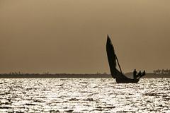 Os três amigos (António Alfarroba) Tags: moçambique ilhademoçambique mozambique indic índico fishermen pescadores sailing sail counterlight contraluz sea mar