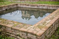 Reflection (balintmolnar1) Tags: rome beautiful streetphotograhpy lumixgh4 gh4 canon colosseum pinokio fountain river fruits guard sunset stairs bnwphotography motor vespa reflection