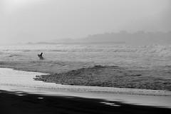 El destino del surfista (alfonsocarlospalencia) Tags: somo surfista playa soledad atardecer destino olas espuma tabla oscuridad arena byn sombras peligro miedo mouro