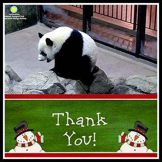 Thank You, SNZ staff and Cam Operators for working today!  Happy Holidays!