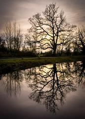 Chaceley Reflection (Matt Bigwood) Tags: chaceley gloucestershire landscape refelection sonya6000 18200 sunset