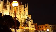 Catedral Port de Mallorca (NATALAN$) Tags: pictures portrait tree night port marina canon de rebel lights spain cathedral yacht catedral palm mallorca palma majorca 2014 650d t4i natalans