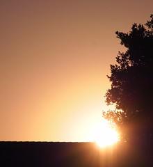 PA160891 Sunset 20131016