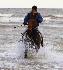 Fingal Harriers at Gormanston beach 372 (Leo Bissett) Tags: ireland sea horse motion water lady fun movement waves paddle style running hunter splash equestrian roisin equine meath trotting gormanston fingalharriersatgormanstonbeach