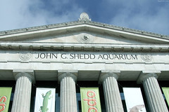 """The Columns of Shedd Aquarium • <a style=""""font-size:0.8em;"""" href=""""http://www.flickr.com/photos/34843984@N07/15354000977/"""" target=""""_blank"""">View on Flickr</a>"""