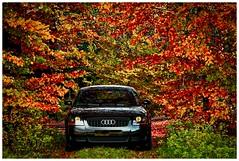 20D-100--1382 (ac | photo) Tags: autumn trees light fall nature colors leaves car landscape fallcolors audi auditt