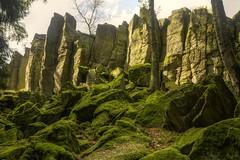Steinwand (Sunstonecruiser (much too busy)) Tags: autumn sun germany landscapes photo moss rocks hessen explore rhn steinwand