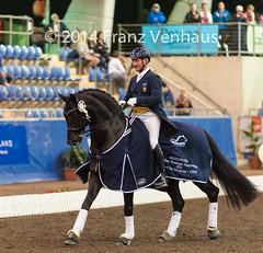 141025_2014_AUS_D_Champs_GPFS_Pres_5688.jpg (FranzVenhaus) Tags: horses performance sydney australia competition event nsw athletes aus equestrian riders dressage siec