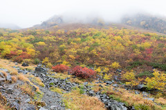 (GenJapan1986) Tags: travel autumn mountain japan landscape     nagano  25mm 2014    nikond600 zf2 distagont225