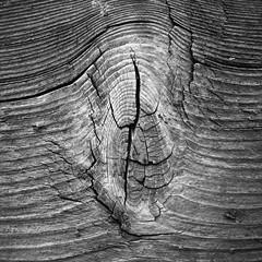 Wood patterns, Tyrol (fabianmohr) Tags: wood mountains alps austria pattern tyrol alpbach