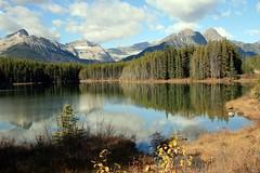 Herbert Lake, Banff National Park, Alberta, Canada - p5232e (photos by Bob V) Tags: lake mountains reflections rockies alberta banff rockymountains mountainlake albertacanada banffnationalpark canadianrockies herbertlake reflectionsonwater banffpark cans2s