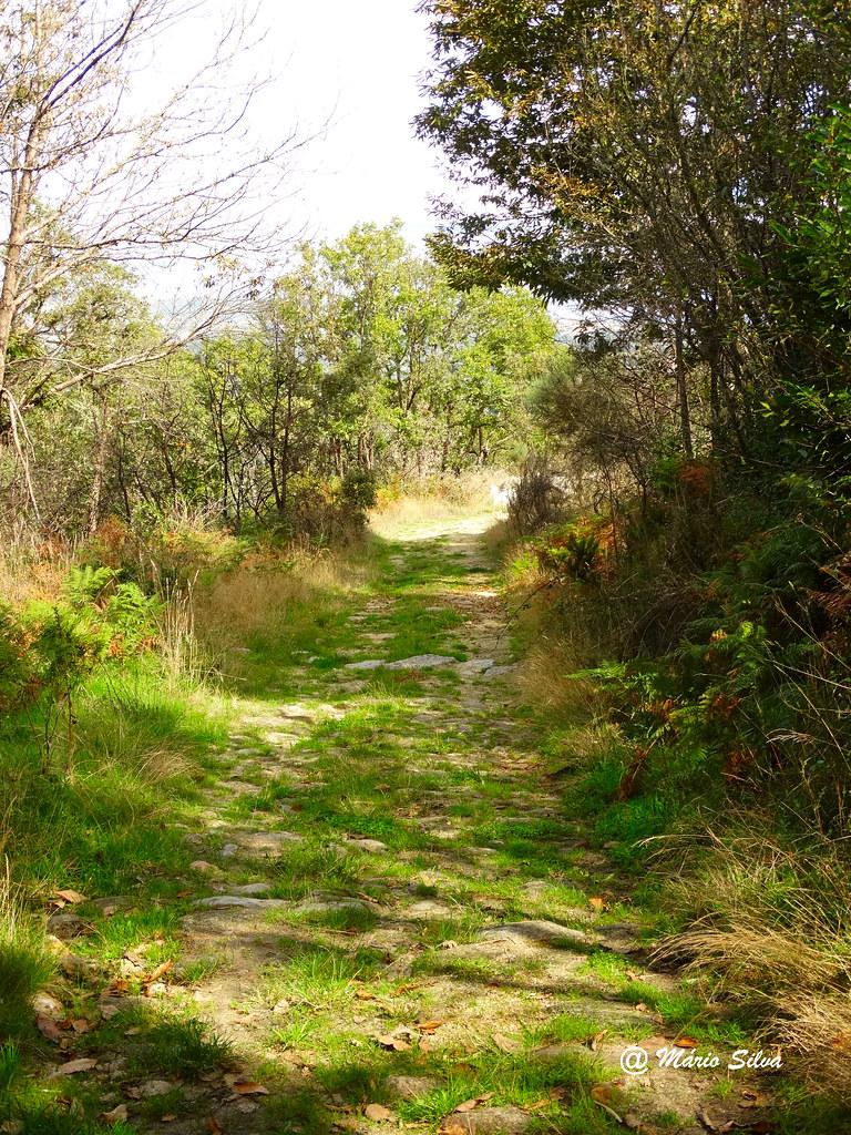 Águas Frias (Chaves) - ... um caminho ...