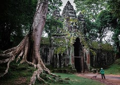 Smiling Down Upon Us (Trent's Pics) Tags: woman tree temple ruins cambodia khmer fig buddhist monastery spiritual siemreap angkor hindu scultpure angkorthom stranglerfig khmersmile