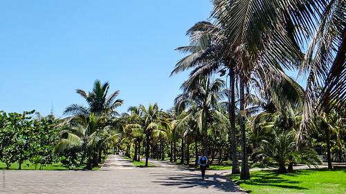 Universidad Veracruzana USBI Veracruz Puerto - Veracruz México 130607 113340 5085 LR