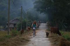 _MG_0672 (liem.ionetour) Tags: travel beautiful landscape nice asia tour du vietnam tay viet mai re gia dep sapa nam bac chau ione maichau dulich mocchau taybac hapdan ionetour