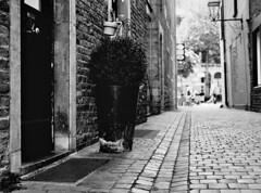 Topf (Christian Güttner) Tags: street blackandwhite bw 120 film monochrome analog mediumformat germany deutschland town 645 aachen stadt sw tyskland gasse bürgersteig rollfilm etrs euregio fomapan mittelformat schwarzweis strase zenzabronica fomapan400 schwarzweisfotografie