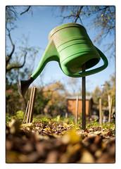 winterized watering can (georgsfoto) Tags: color herbst farbe garten farbig bunt heimat nikond700 nikkornauto282