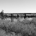 Missouri-Pacific Railway Trestle over Unnamed Body of Water 1410251402bw