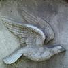 Dove (Bigadore) Tags: whitebronze