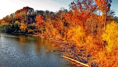IMG_3096.JPG (Jamie Smed) Tags: 2014 iphoneedit app snapseed teamcanon handyphoto hdr t1i rebel reflections reflection panorama pano wintonwoods trees tree reflect creepycampout campout water autostitch facebook reflects light cincinnati jamiesmed ohio midwest october autumn fall canon eos dslr 500d