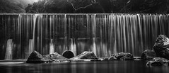 wulai-0000377 (mingshah) Tags: longexposure bw nature river taiwan jungle weir wulai supershot newtaipei