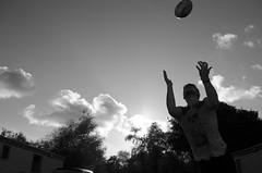 Devon Rugby Two (Blake Murray -