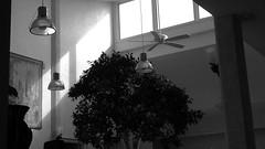 sky light atrium (Ange 29) Tags: bw sunlight canada nokia king skylight atrium n8 township