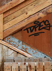 SHELTER (mioke) Tags: wood woodgrain holz maserung pattern structur fashion camoflage fake disappear verschwinden moki mioke