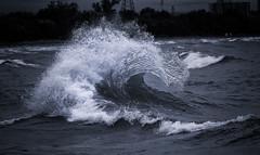 Wave (Metro Tiff) Tags: waves collide break wall rebound mist curl water storm wind surf inland lake ontario monochrome canon 5dmkiii