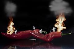 Hot Peppers (PLADIR) Tags: feuer fire feuerwehr firefighters peppers makro mac sony sonya57 slta57 schwarzerhintergrund fun spas spass gemse vegetables